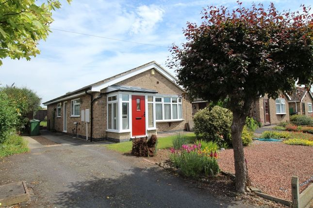3 bed bungalow to rent in Braddon Road, Loughborough LE11