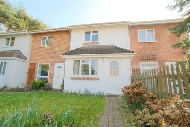 Thumbnail Terraced house for sale in Winkton Close, Burton, Christchurch