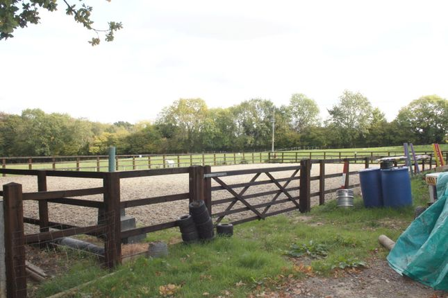 Land for sale in Prestwick Lane, Grayswood, Haslemere GU27