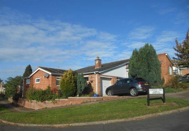 Thumbnail Bungalow to rent in Godwin Way, Bromham