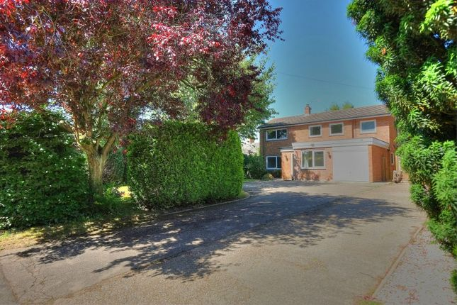Thumbnail Detached house for sale in Canns Lane, Norwich