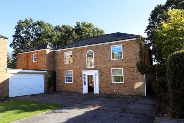 Thumbnail Detached house to rent in The Moat, New Malden