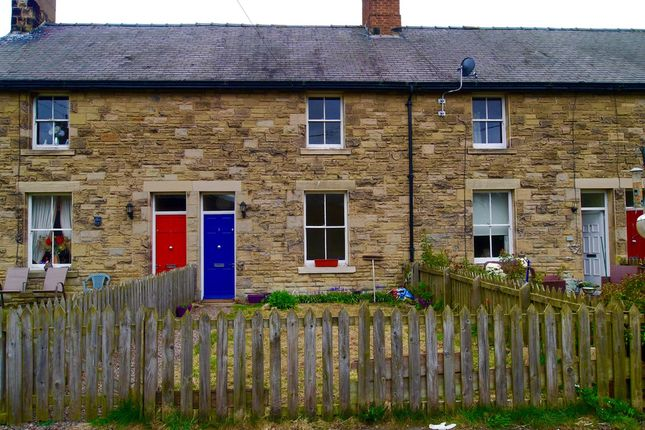 Thumbnail Cottage to rent in Station Cottages, Whittingham, Alnwick