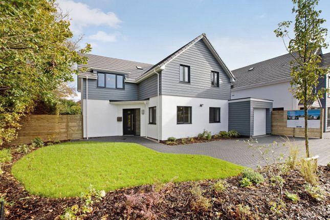Thumbnail Detached house for sale in Cricket Field Lane, Budleigh Salterton, Devon