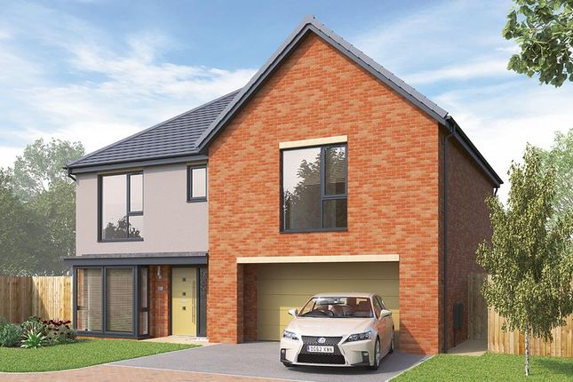 "Thumbnail Detached house for sale in ""The Chesham"" at Cherry Wood Way, Waverley, Rotherham"