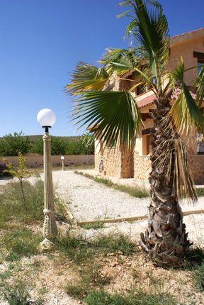 Image19 of Pinoso, Alicante, Spain