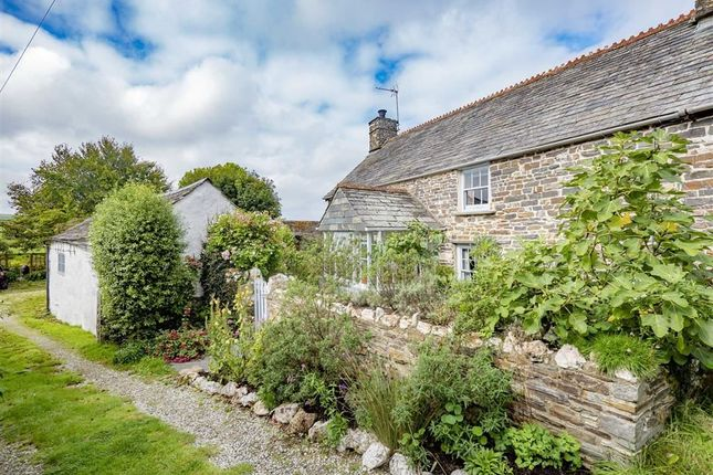 Thumbnail Terraced house for sale in Rosecare, Nr Crackington Haven, Bude, Cornwall