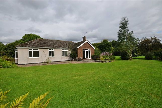 Thumbnail Detached bungalow to rent in Lower Interfields, Malvern