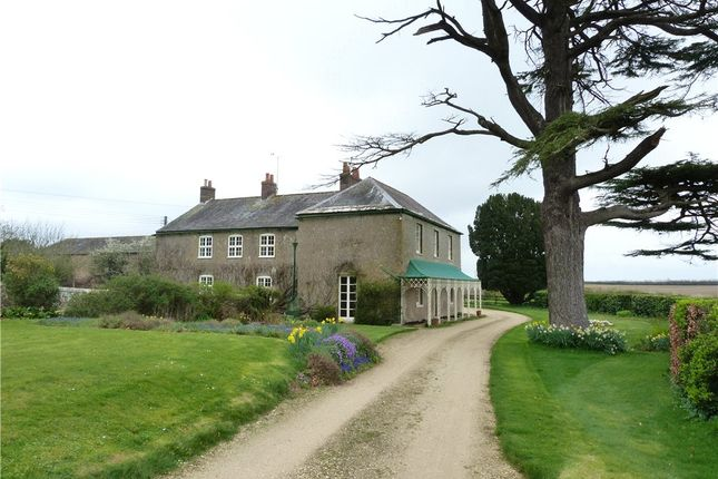 Thumbnail Detached house to rent in West Stafford, Dorchester, Dorset