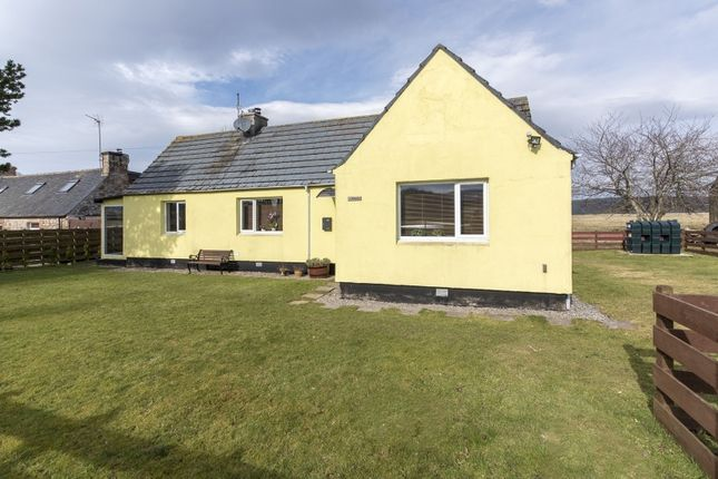 Thumbnail Bungalow for sale in Ardmore, Edderton, Tain, Highland