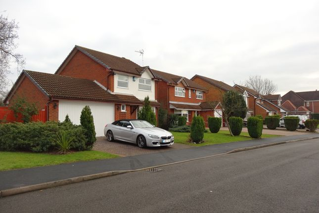 Thumbnail Detached house to rent in Bufferys Close, Solull