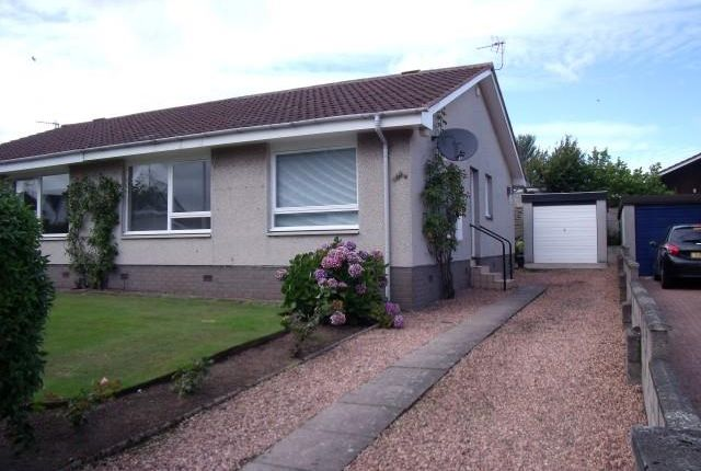 Thumbnail Semi-detached bungalow to rent in Brington Place, Dundee