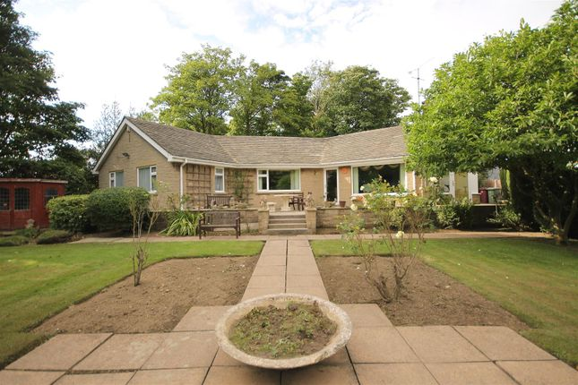Thumbnail Detached bungalow for sale in Main Road, Old Brampton, Chesterfield