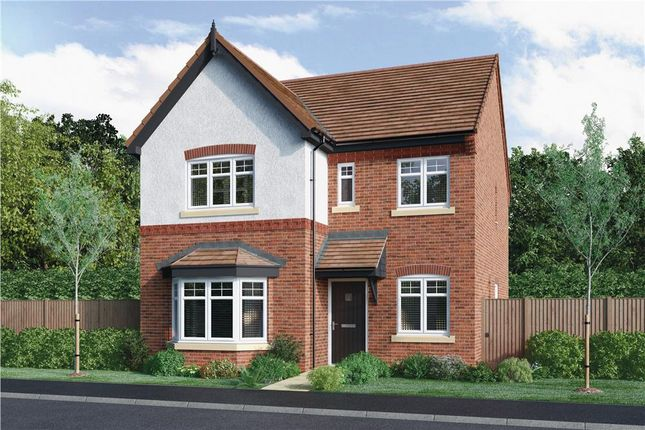 """Thumbnail Detached house for sale in """"Calver"""" at Radbourne, Ashbourne"""