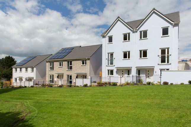 Thumbnail Semi-detached house for sale in The Matei Southern Gate, Plymouth