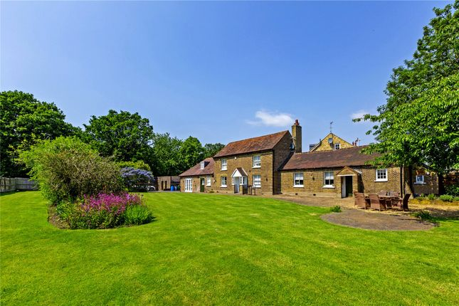 Thumbnail Detached house to rent in Chisholm Road, Richmond, Surrey
