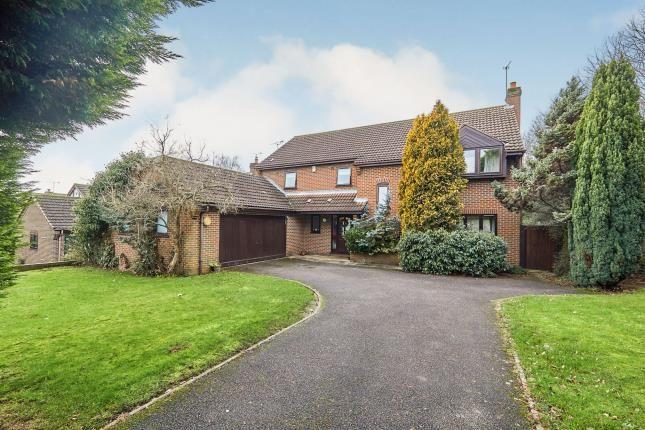 Thumbnail Detached house for sale in Morley Road, Oakwood, Derby, Derbyshire