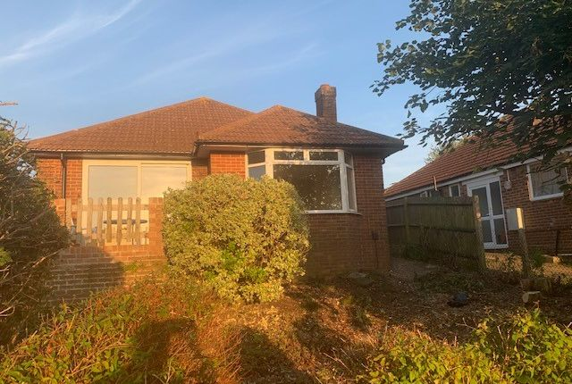 3 bed detached bungalow to rent in Chalkland Rise, Brighton BN2