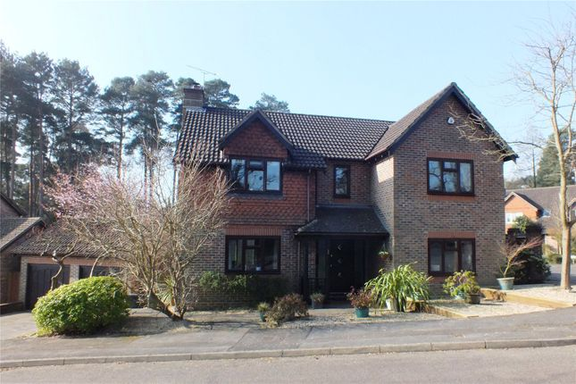 Thumbnail Detached house for sale in Amber Hill, Camberley, Surrey