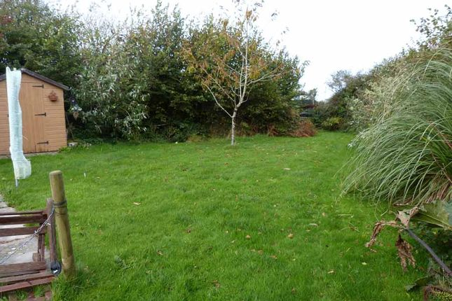 Back Garden of Gnome World Holiday Park, Indian Queens TR9