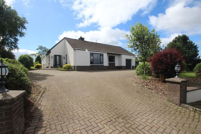 Thumbnail Bungalow for sale in Dairyland Road, Straid, Ballyclare