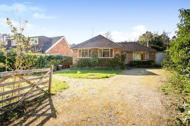 Thumbnail Bungalow for sale in Lightwater, Surrey, United Kingdom