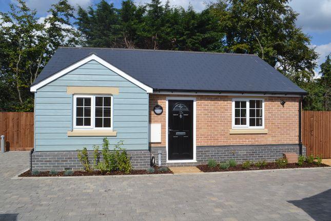 Thumbnail Detached bungalow to rent in Alpha Terrace, Trumpington, Cambridge