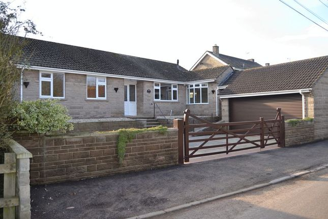 4 bed detached bungalow to rent in Compton Street, Compton Dundon, Somerton