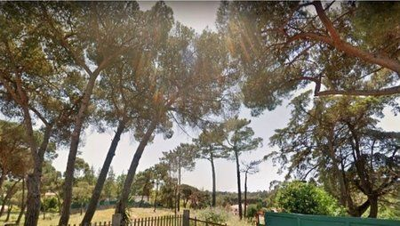 Thumbnail Land for sale in Cascais, Lisbon, Portugal