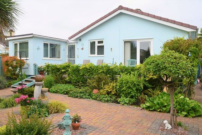 Thumbnail Bungalow for sale in Pomeroy Avenue, Brixham