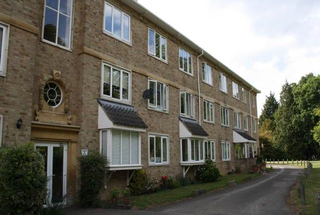 Flat to rent in Quintin Gurney House, Keswick Hall, Keswick
