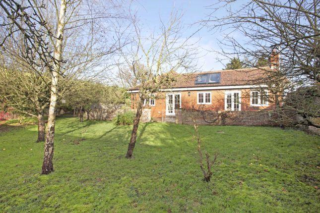 Thumbnail Bungalow to rent in Walnut Tree Cottage, Hatchet Lane, Winkfield, Berkshire