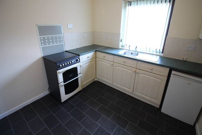 Thumbnail Semi-detached house to rent in Turnpike Close, New Inn, Pontypool
