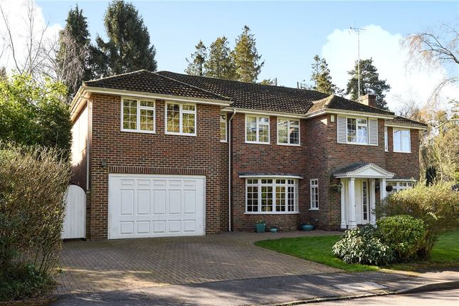 4 bedroom detached house for sale in Priors Wood, Crowthorne, Berkshire