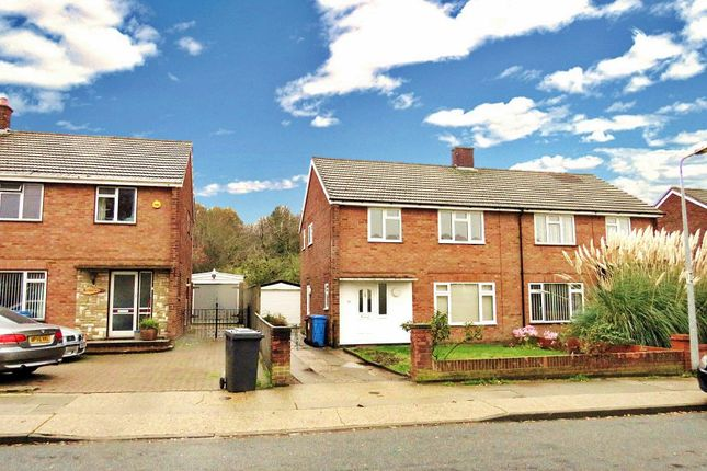 Thumbnail Property to rent in Dales Road, Ipswich