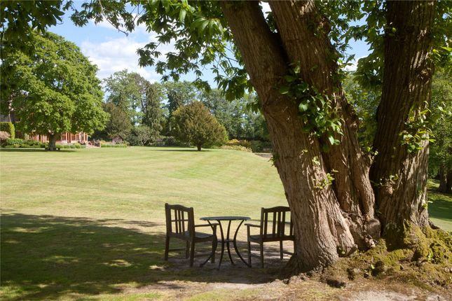 View Over Lawn of Rockford Common, Ringwood, Hampshire BH24