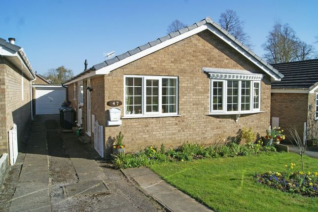 Thumbnail Detached bungalow for sale in Park Avenue, Darley Dale, Derbyshire