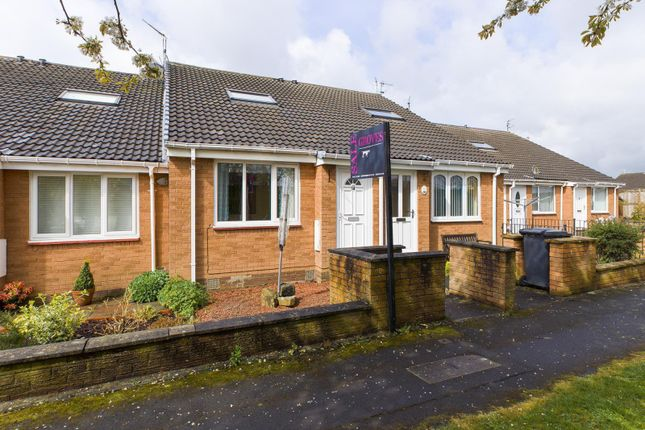 Thumbnail Bungalow for sale in Willow Close, Morpeth