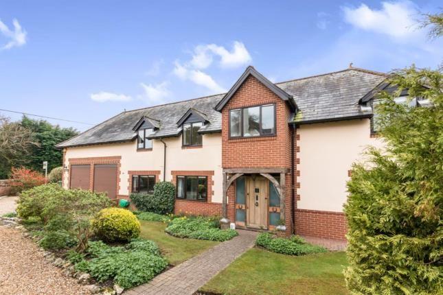 Thumbnail Detached house for sale in Dummer, Basingstoke, Hampshire