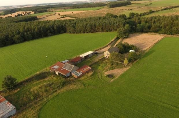 Cottage for sale in Healey Whins, Healey, Northumberland