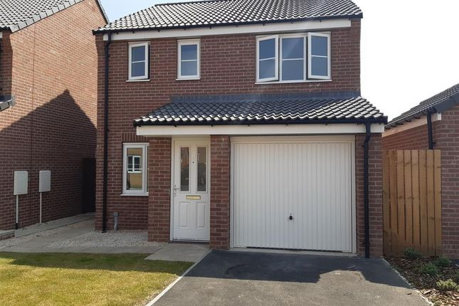 3 bed detached house to rent in Avalon Gardens, Harworth, Doncaster DN11