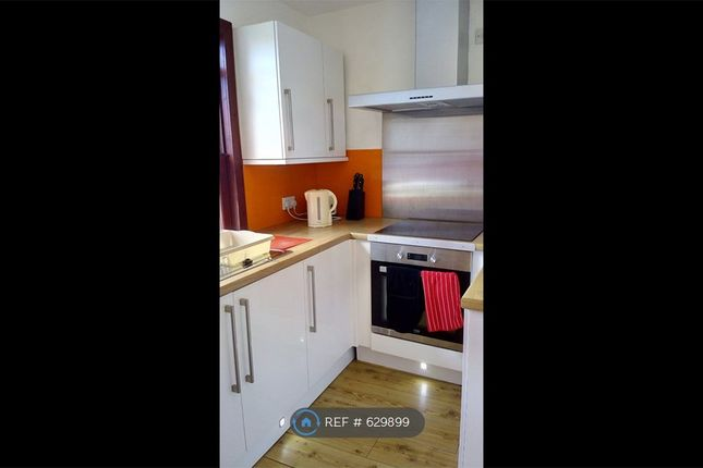 Thumbnail Detached house to rent in Spital, Aberdeen