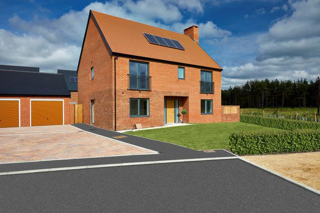 Thumbnail Detached house for sale in Sword Close, Matchams, Ringwood