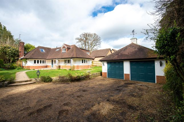 Thumbnail Detached bungalow to rent in London Road, Petersfield