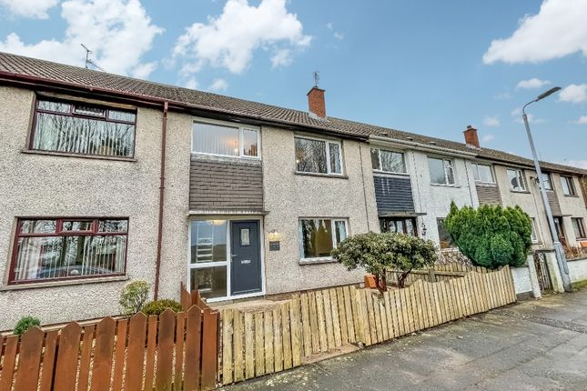 Thumbnail Terraced house to rent in Moira Road, Lisburn