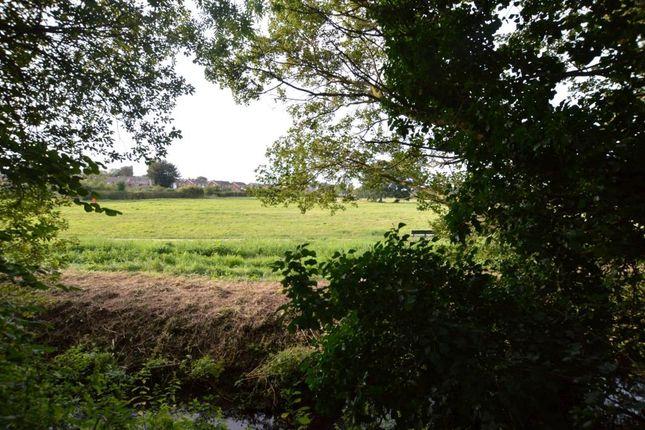 Fields Opposite of Berrybrook Meadow, Exminster, Exeter, Devon EX6