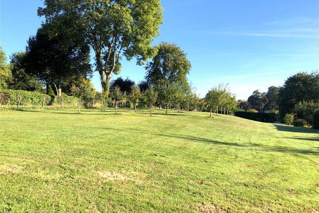 Thumbnail Land for sale in High Street, Hindon, Salisbury