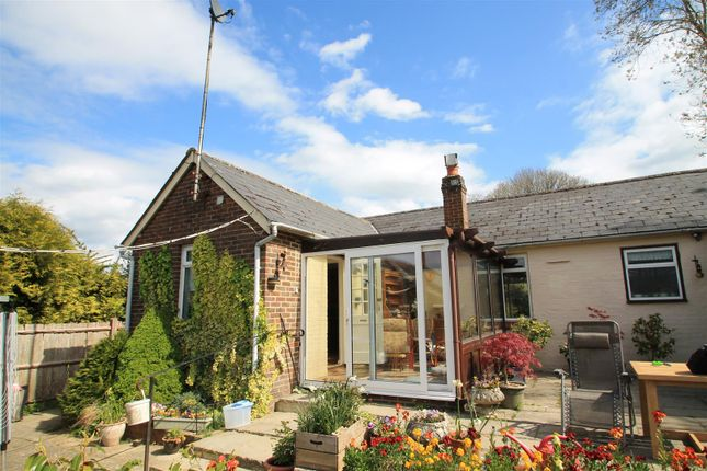 Thumbnail Property to rent in Roman Road, Steyning