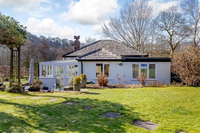 Thumbnail Detached bungalow for sale in Montagu Street, Stockport