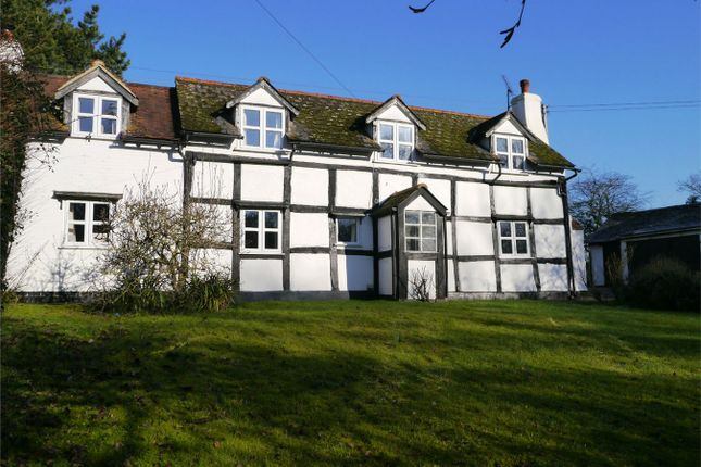 Thumbnail Detached house for sale in Long Green, Forthampton, Gloucester